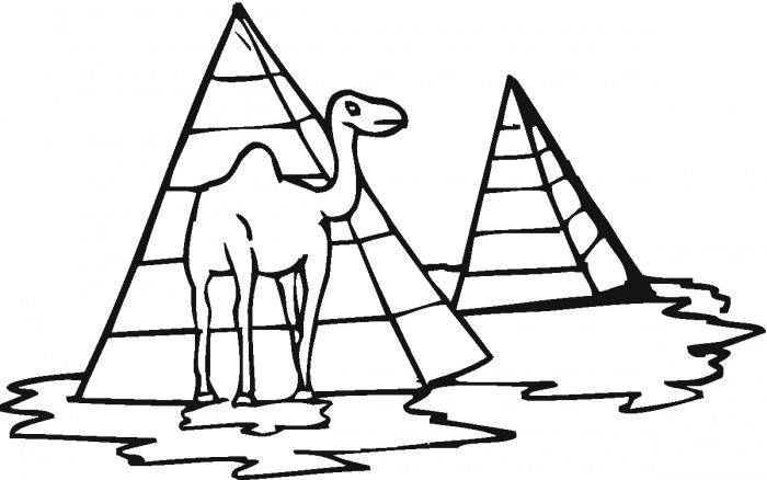 Desenho De Pir 226 Mide E Camelo Para Colorir Tudodesenhos