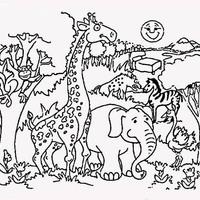 Desenhos De Zoologico Para Colorir Tudodesenhos