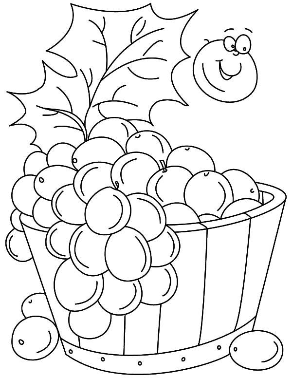 desenho de cesto de uvas roxas para colorir tudodesenhos