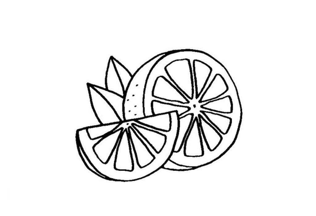 Desenho De Gomo De Laranja Para Colorir Tudodesenhos