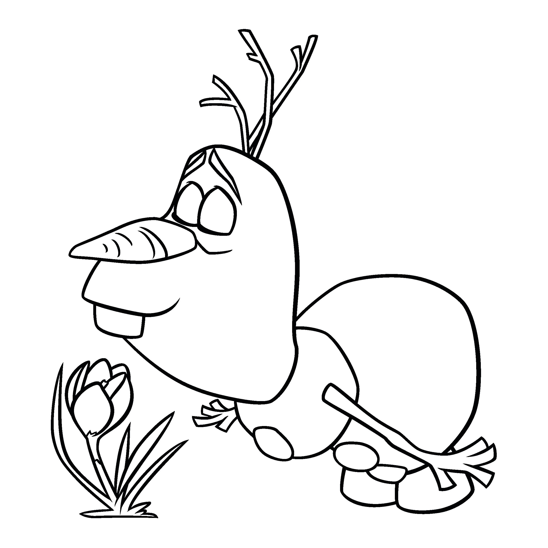 Desenho de olaf cheirando flor para colorir tudodesenhos for Frozen da colorare e stampare