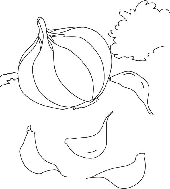Desenho De Dentes De Alho Para Colorir Tudodesenhos
