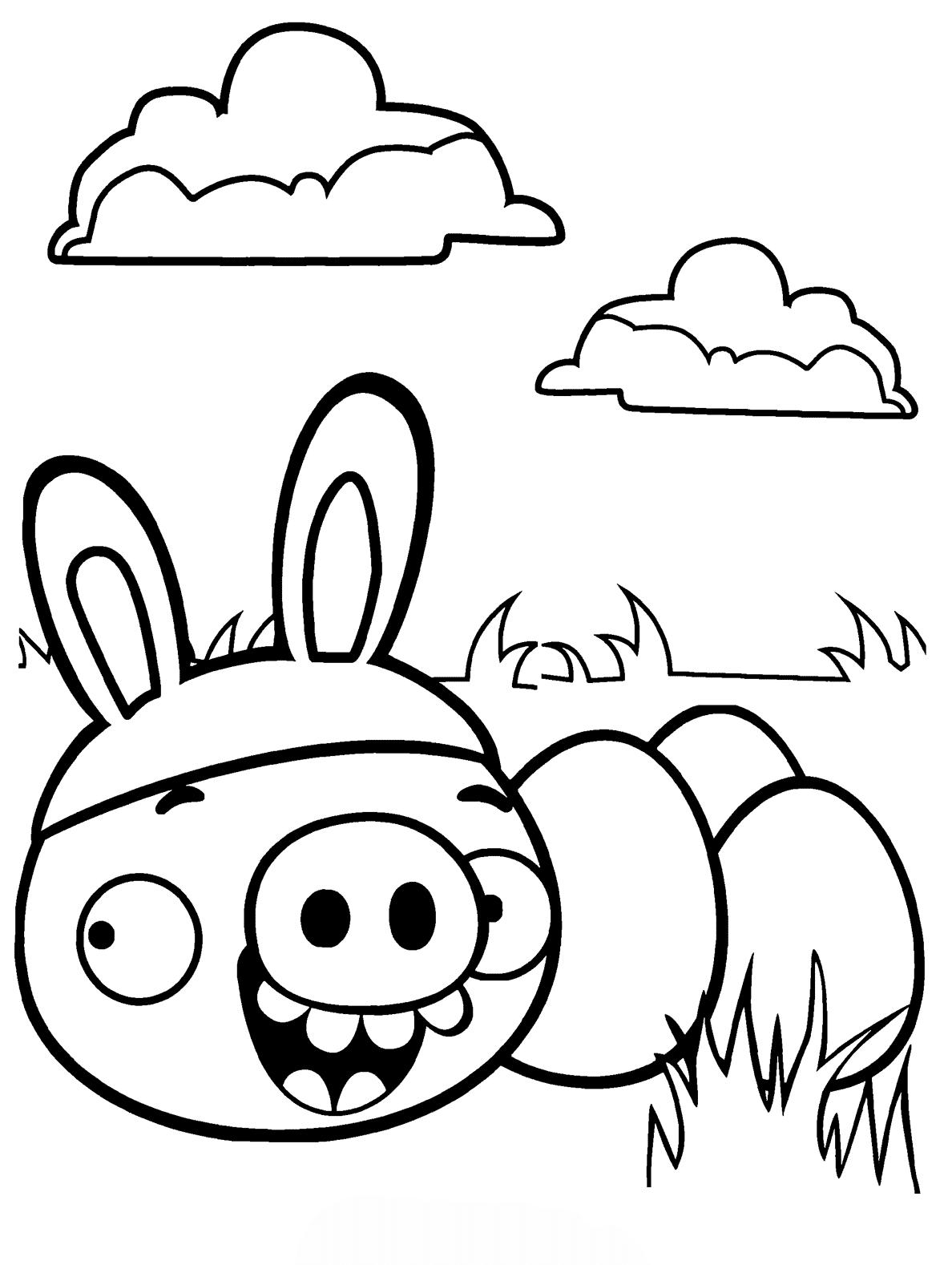 Desenho De Angry Birds Na P 225 Scoa Para Colorir Tudodesenhos
