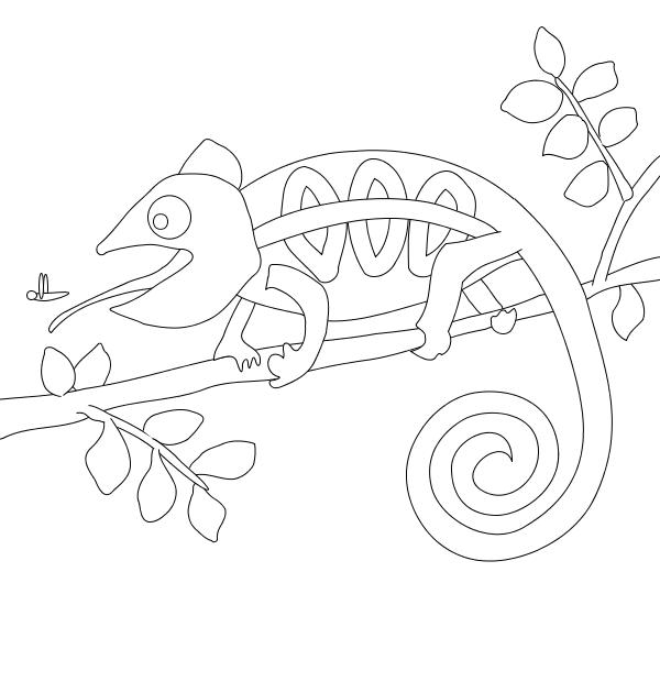 desenho de camaleão bonito para colorir tudodesenhos