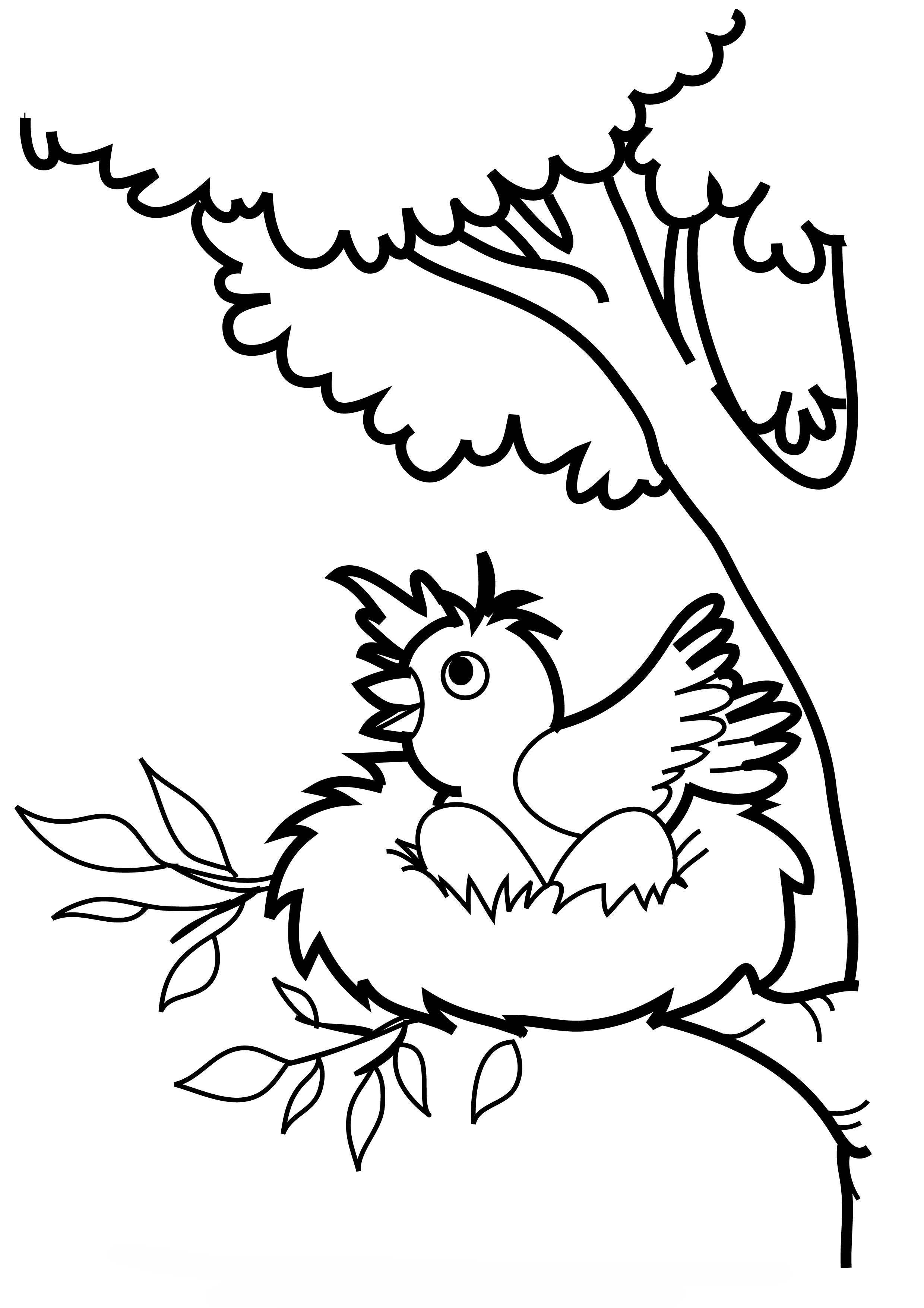 Desenho De Passarinha Chocando Ovos No Ninho Para Colorir