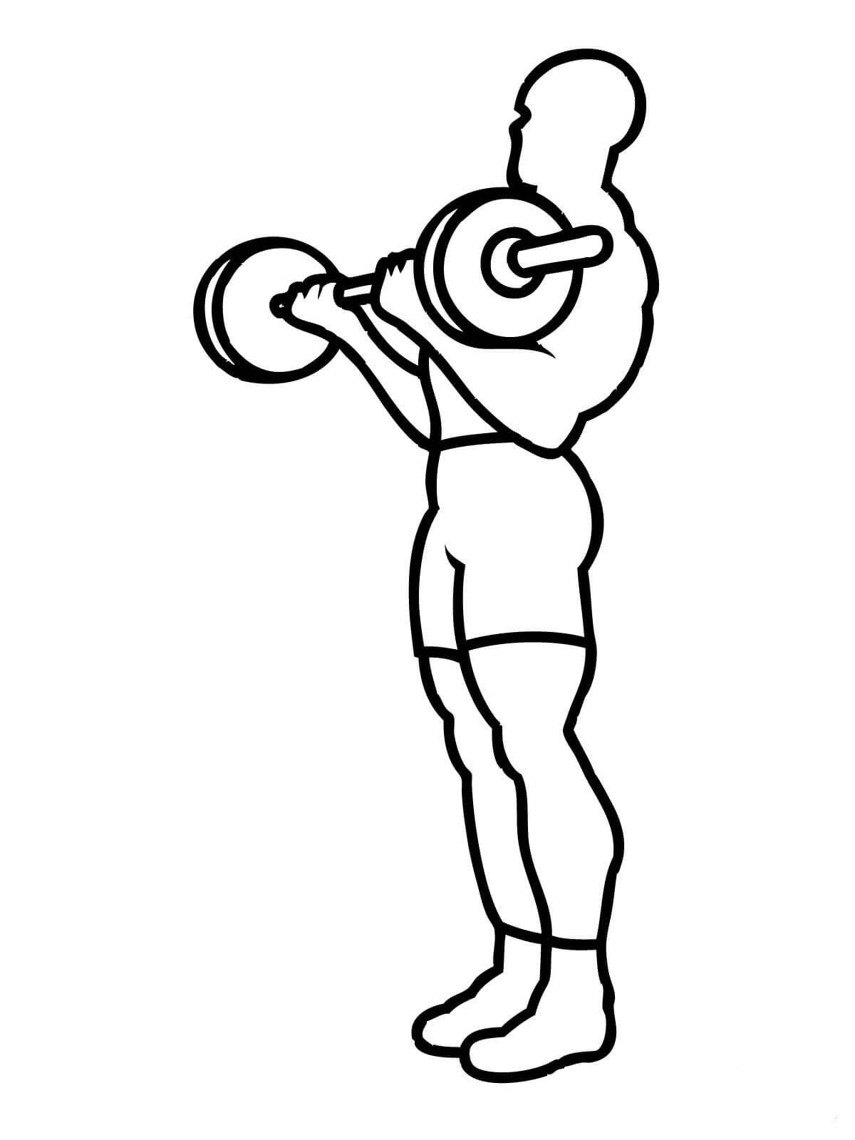 Resultado de imagem para desenho de musculação