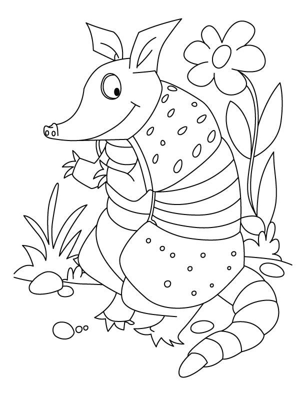 Desenho De Tatu No Jardim Para Colorir Tudodesenhos