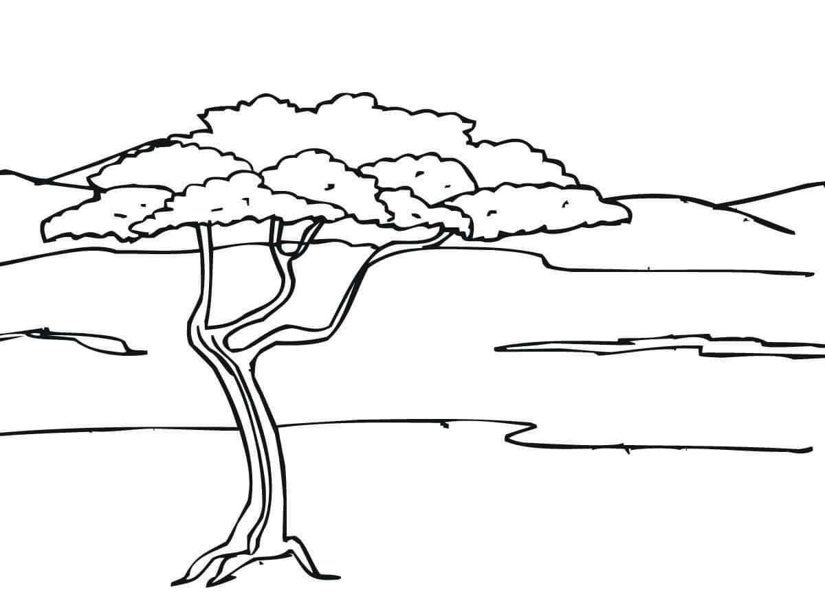 Desenho De Paisagem Da Savana Africana Para Colorir Tudodesenhos