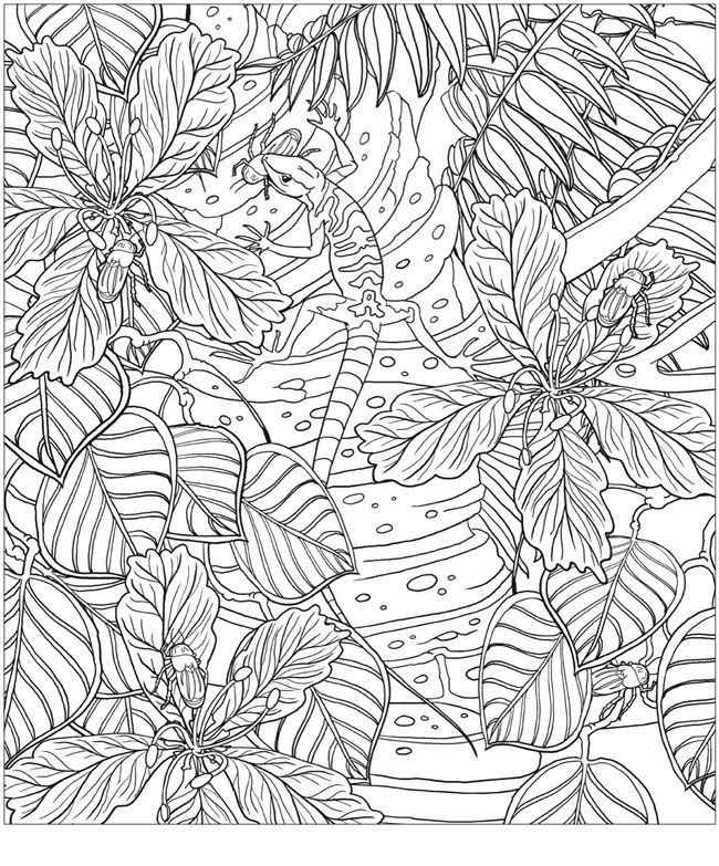 mindware free coloring pages - photo#19