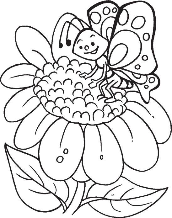 desenho de borboleta posando na flor para colorir tudodesenhos