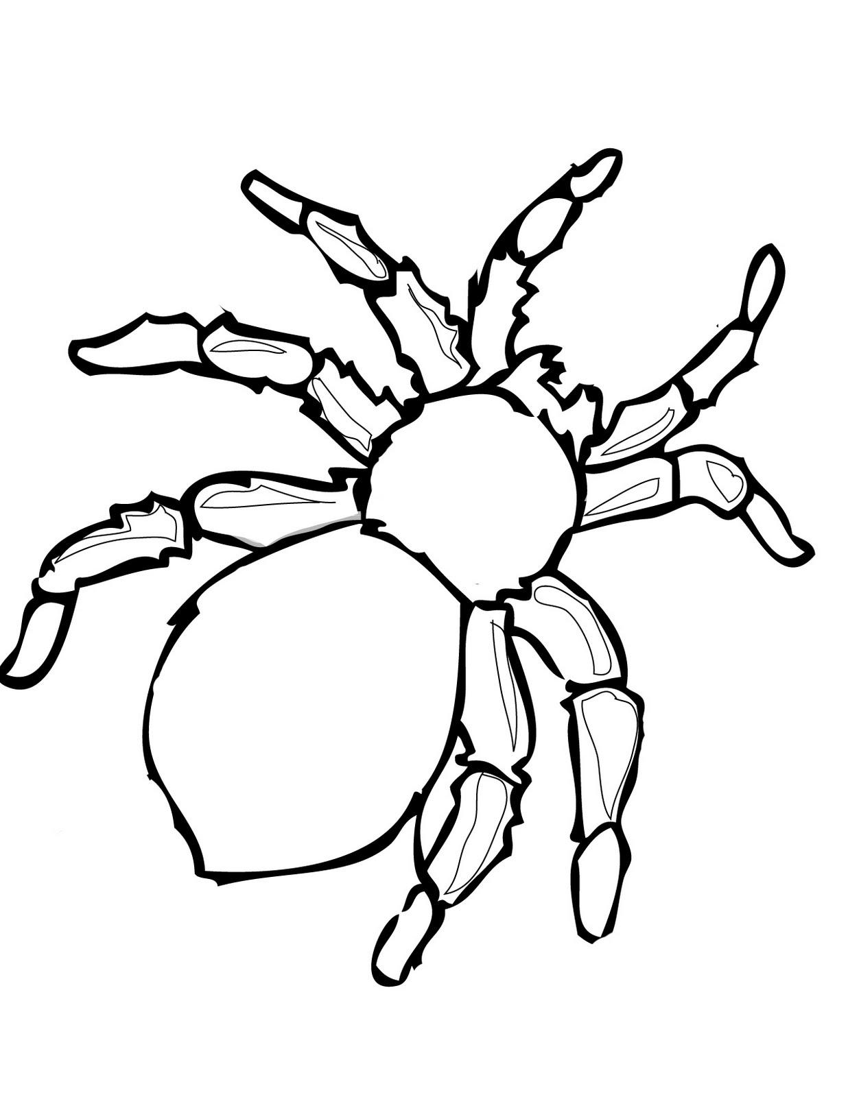 Desenho De Aranha Perigosa Para Colorir Tudodesenhos
