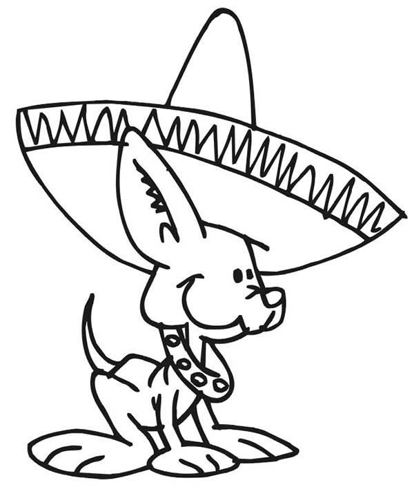 Desenho De Cachorro Com Chapeu Mexicano Para Colorir Tudodesenhos