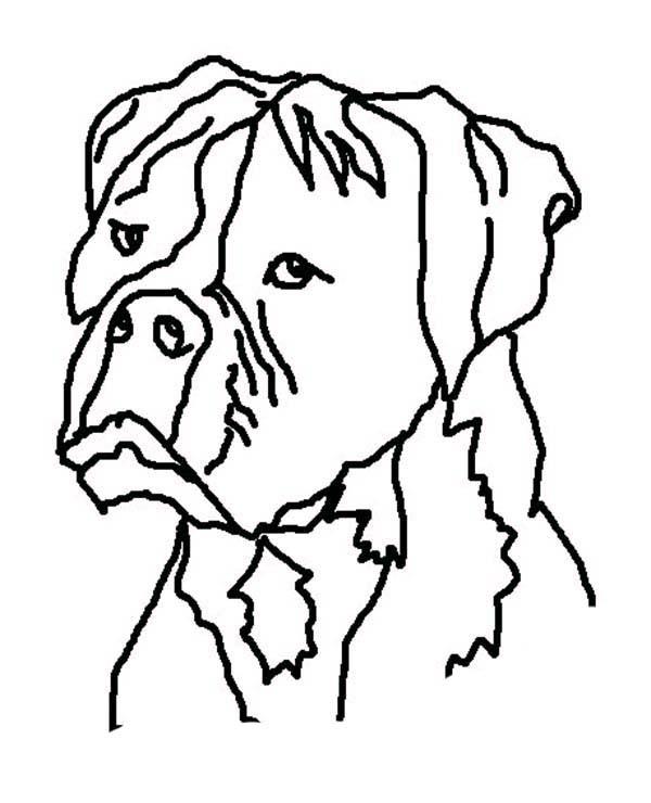 Desenho De Cachorro Feio Para Colorir