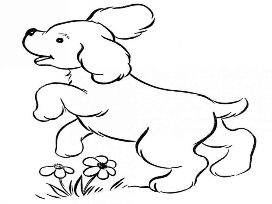 desenho de cachorro filhote para colorir tudodesenhos