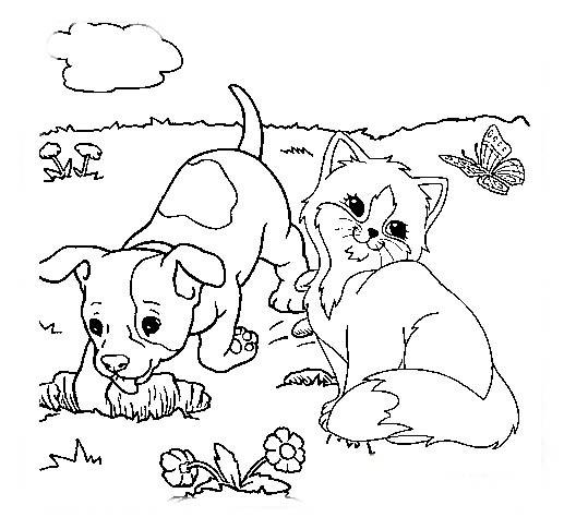 desenho de gatinho e cachorrinho para colorir tudodesenhos