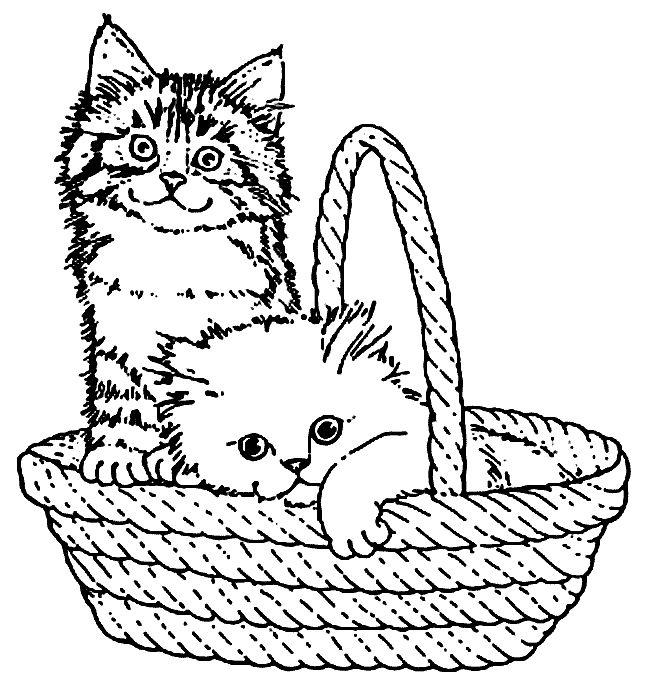 Desenho De Gatos Fofos Na Cestinha Para Colorir Tudodesenhos