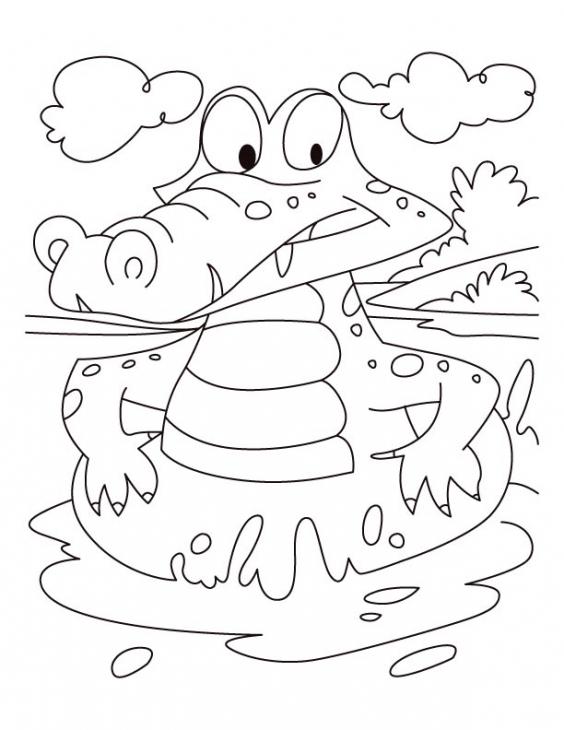 desenho de jacaré nadando com boia para colorir tudodesenhos