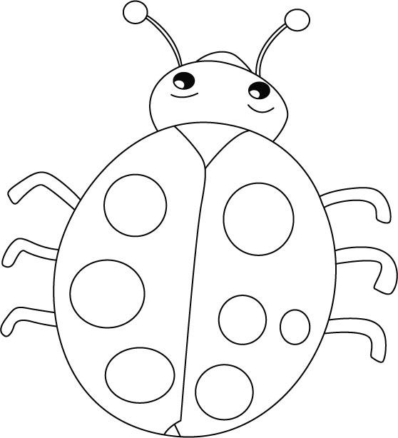 57449083ff Desenho de Joaninha inseto para colorir - Tudodesenhos