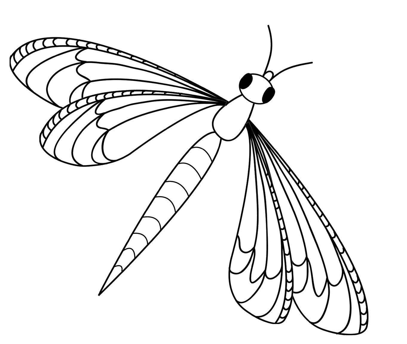 Colour Line Art Design : Desenho de libélula inseto para colorir tudodesenhos