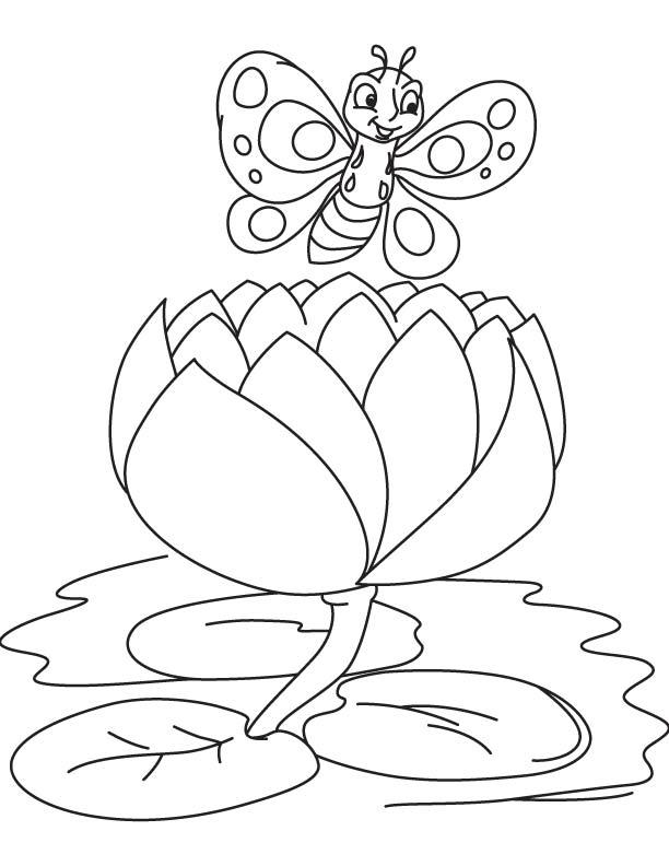 desenho de borboleta posando no nen far para colorir