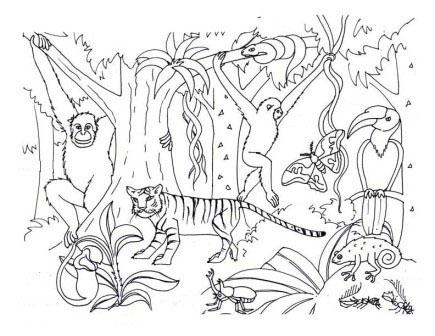 desenho de floresta asiática para colorir tudodesenhos