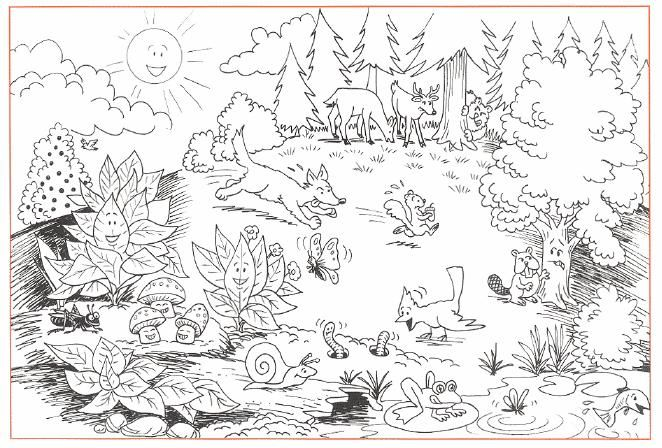 forest background coloring pages - photo#31