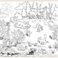 Desenhos De Floresta Para Colorir Tudodesenhos