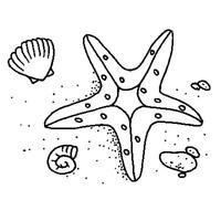 desenhos de estrela do mar para colorir tudodesenhos
