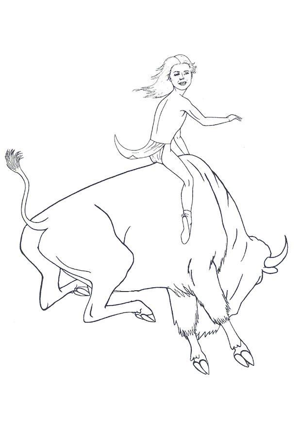 Desenho De Boi De Rodeio Para Colorir Tudodesenhos
