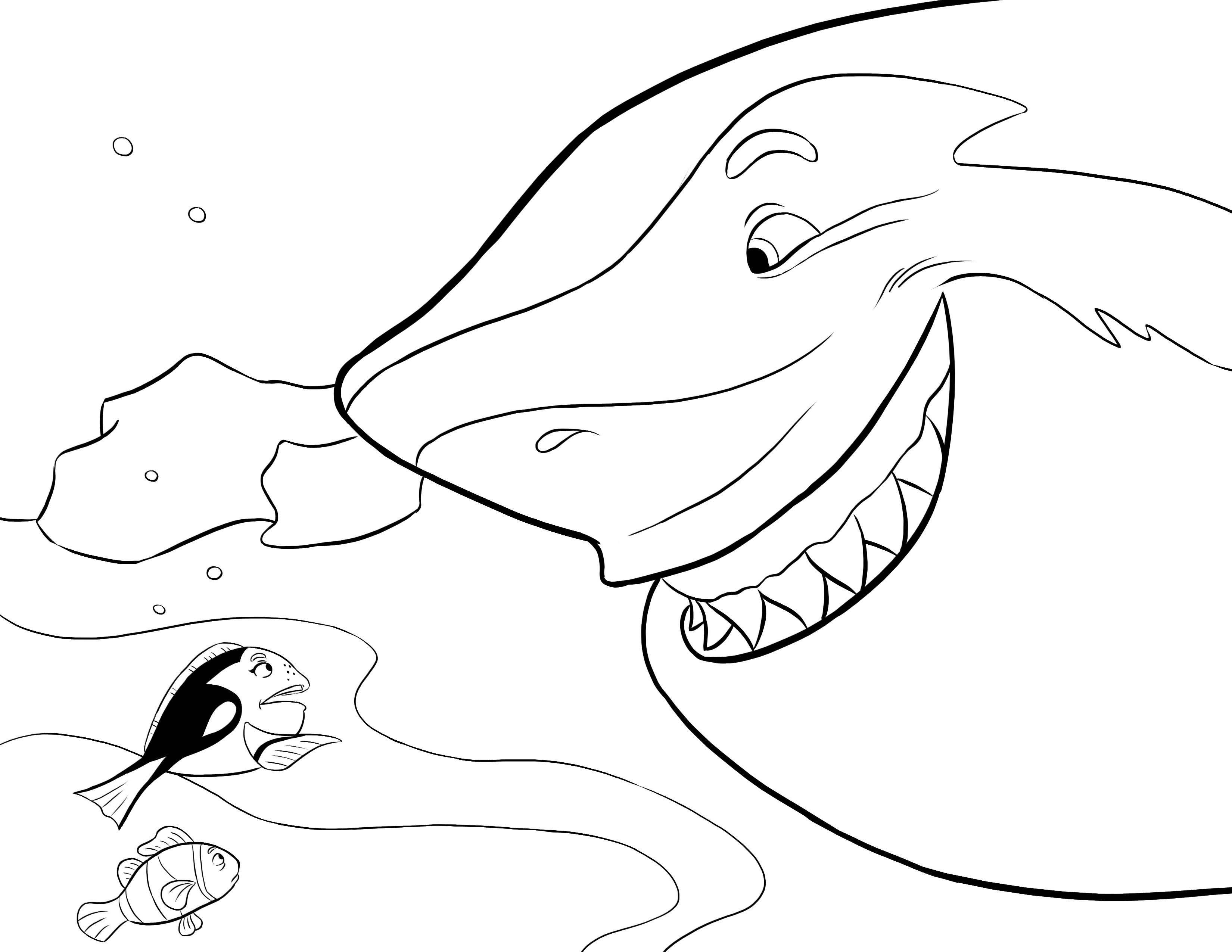 Desenho De Tubarão Atacando Nemo E Doris Para Colorir