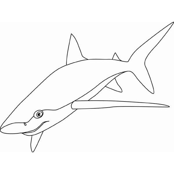 Desenho De Tubarão Azul Para Colorir