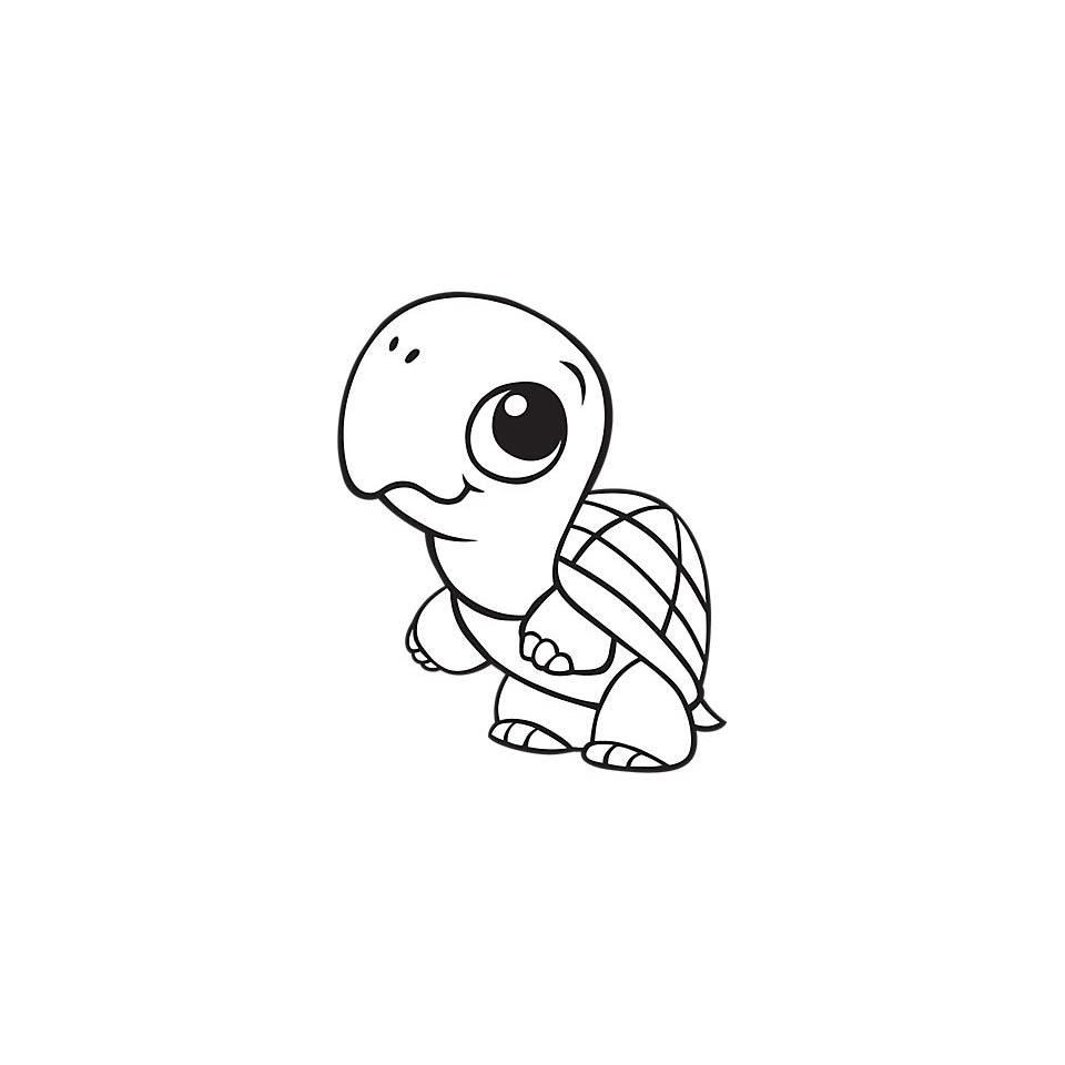 Desenho De Tartaruga Bebe Para Colorir Tudodesenhos