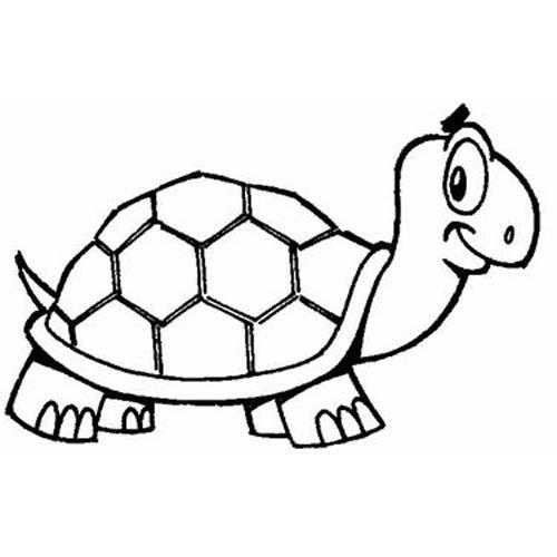 Desenho De Tartaruga Alerta Para Colorir Tudodesenhos