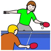 the ping pong